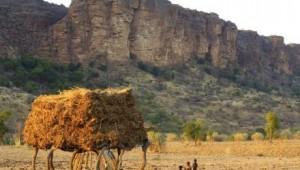 Voyage aux Pays Senoufo et Pays Lobi
